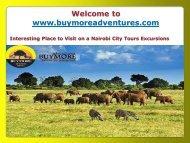 Nairobi City Tours Excursions