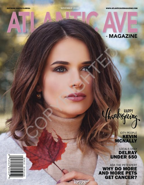 Atlantic Ave Magazine November 2019