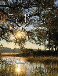 The Breeze - NOVEMBER 2019