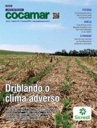 Jornal Cocamar Novembro 2019