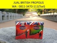 DISKON !! TELP : 0811-3470-111 (Tsel), Distributor British Propolis Untuk Asam Lambung Sidoarjo Surabaya