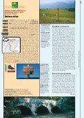 Spielplatz Genfersee - Seite 6
