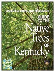 Tree ID Guide
