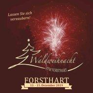 Der Boar - Programmheft Forsthart 2019