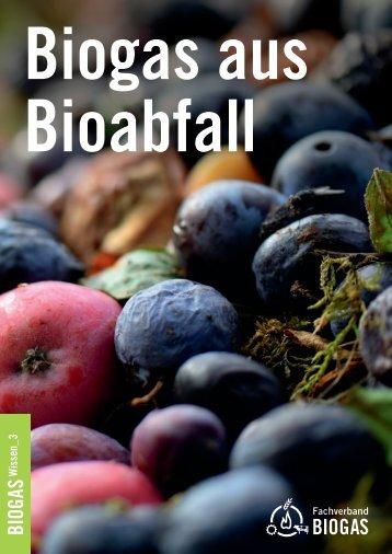 Biogas aus Bioabfall