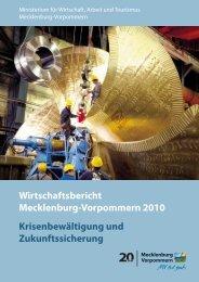 Wirtschaftsbericht Mecklenburg-Vorpommern 2010 ...