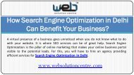 How Search Engine Optimization in Delhi can benefit your business?