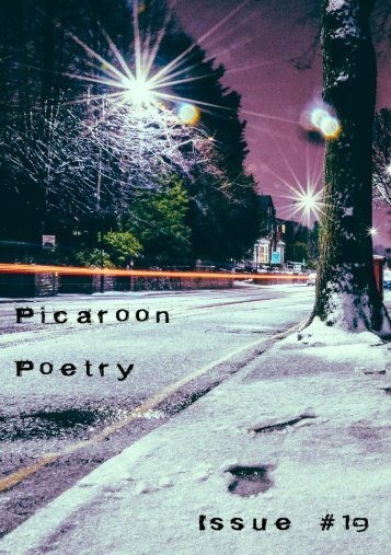 Picaroon Poetry - Issue #19 - November 2019