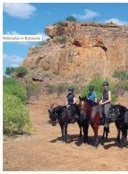 Nervenkitzel - Limpopo Valley Horse Safaris