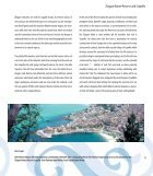 beaches-of-sicily - Page 7