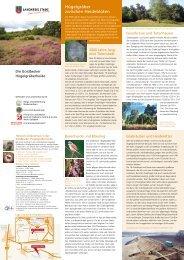 Hügelgräber zwischen Heideblüten - NOLIS Manager