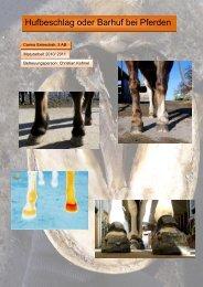 Hufbeschlag oder Barhuf bei Pferden - Gsundihuf.ch