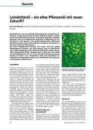 Leindotteröl – ein altes Pflanzenöl mit neuer Zukunft? - EM-Chiemgau