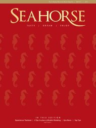 Seahorse Issue 9
