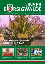 Unser Borsigwalde 32 (Weihnachten 2019)