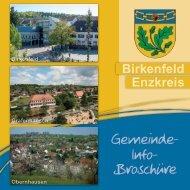 Gemeindebroschuere Birkenfeld