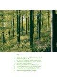 Mit Holz in die Zukunft? - Institut für ökologische Wirtschaftsforschung - Seite 3