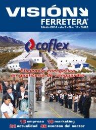 Revista Vision Ferretrea Edic 17