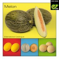 International Catalogue Melon