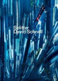 Leseprobe:  Splitter. David Schnell