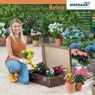 DIEPHAUS Katalog 2020