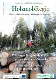 HolzmobRegio - Sonderbeilage