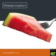 Leaflet Watermelon USA 2019