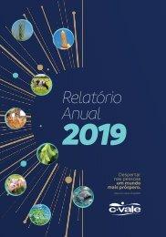 Relatório Anual 2019 - C.Vale