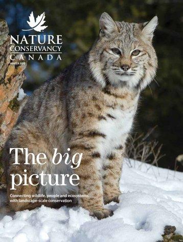 NCC Magazine: winter 2020