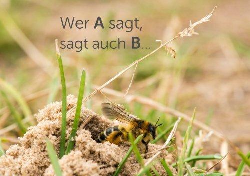 Wer A sagt, sagt auch B: Artenvielfalt ist auch Bodenvielfalt und Bäuerliche Vielfalt