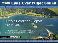 Surface Conditions Report Eyes Over Puget Sound