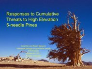 Restoration activities - Continental Dialogue on Non-Native Forest ...