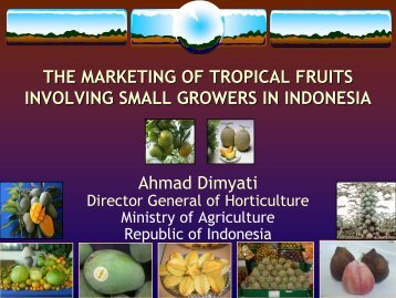 the marketing of tropical fruits in indonesia - International Tropical ...