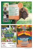 New Forest Living Mar - Apr 2020 - Page 7