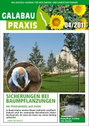GALABAU PRAXIS 04-2011
