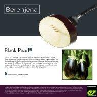 Leaflet Black Pearl 2020