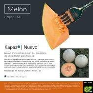Leaflet Kapaz 2019