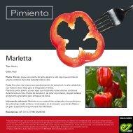 Leaflet Marletta 2020