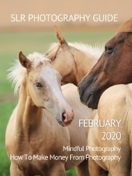 SLR Photography Guide - February Edition 2020