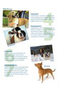 Alles over Honden - Mars - Page 7