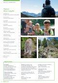 Nagelfluh 1-2020 - Page 4