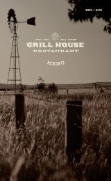 Grill House 1.4-1,10.2020. Galaxy & Baltic Princess ENG/ RUS