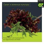Салат и зеленные культуры 2020