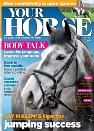 Your Horse Mar 20