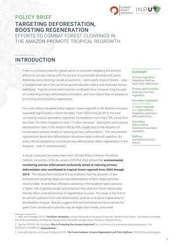 Targeting Deforestation, Boosting Regeneration