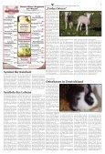 Warburg zum Sonntag 2020 KW 14 - Page 3