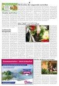 Warburg zum Sonntag 2020 KW 14 - Page 4