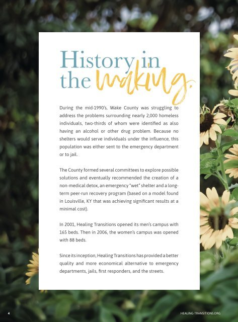 Healing Transitions 2019 Annual Report