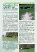 In dieser Ausgabe: - Seite 6