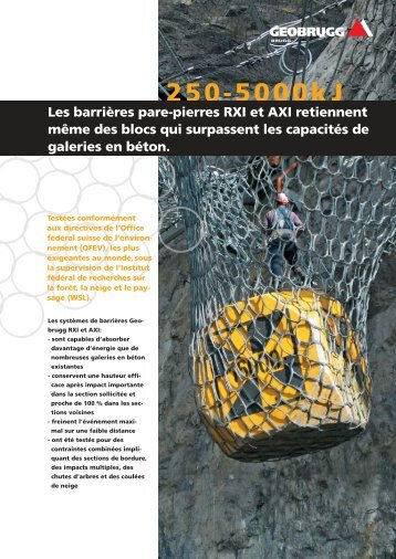 Download PDF - Geobrugg AG